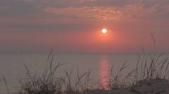 Pink sunrise. Morning seaside. Flying birds. Stock Footage