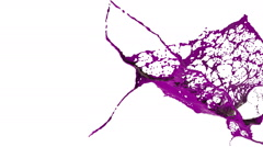 Close-up view of purple splashes in slow motion. Colored paint Stock Footage