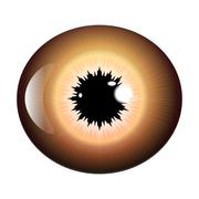 Eye, pupil, iris, vector symbol icon design. Beautiful illustration isolated  Stock Illustration