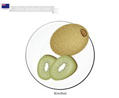Kiwifruit or Chinese Gooseberry, A Popular Fruits in New Zealand Stock Illustration