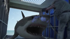 Man giving shock to shark with iron rod in cage Stock Footage