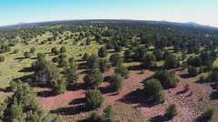 Flying Over North Central Arizona High Wooded Plateau- Valle AZ 10sec Stock Footage