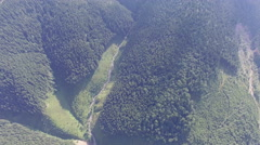 Aerial view above forest Stock Footage