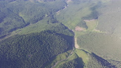 Aerial shot of the forest in the Carpathian mountains. Stock Footage