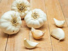Garlic Contains a Compound Called Allicin, Medicinal Properties,  The Active Stock Photos
