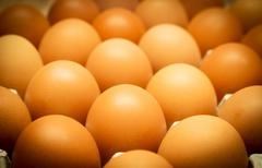 The Nutritional Value of  Egg whites are a low-calorie, fat-free food. They c Stock Photos