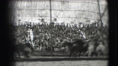 1948: horses are seen running CHICAGO Stock Footage