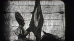 1948: a person is seen on a horse and people are seen doing acts CHICAGO Stock Footage