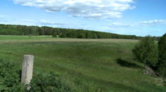 Midday landscape - green field and forest Stock Footage