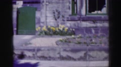1952: yellow daffodils and other flowers planted in front of a window Stock Footage