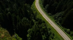 Aerial Black car moving on the road in the pine forest  Stock Footage