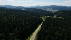 Aerial two white car moving on the road in the pine forest Stock Footage