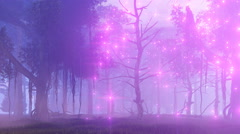 Fairy lights in misty night forest 4K Stock Footage