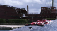 Detail of old cannon in Saint George, Bermuda Stock Footage
