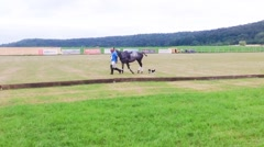 Polo game in Bavaria, Germany Stock Footage