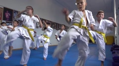Open Doors Karate Training For Children - working methods of attack and defense Stock Footage