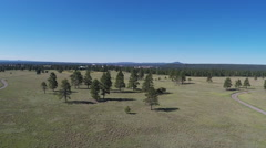 High And Wide View Of Buffalo Park- Summer Day- Flagstaff AZ Stock Footage