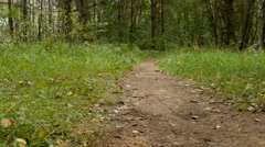 Teen rides a bike through the woods Stock Footage