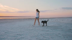 Young female playing with labrador retriever dog on the beach at sunset, slow mo Stock Footage