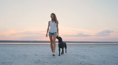 Young female playing and training labrador retriever dog on the beach at sunset Stock Footage