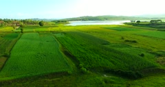 Grass land  and lake  hill Aerial shot Stock Footage
