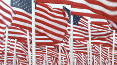 USA Flags Fill Frame Stock Footage