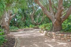 Walkway and bench in the  Kirstenbosch National Botanical Gardens Stock Photos
