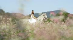 DOF: Girl in white dress bareback riding white horse on white flowering field Stock Footage