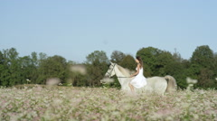 SLOW MOTION: Beautiful innocent girl riding white horse in pink blooming field Stock Footage
