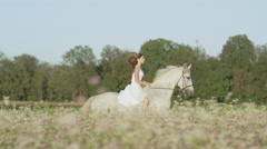 SLOW MOTION: Innocent young woman riding white horse in pink flowering field Stock Footage