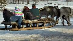 Reindeer team with people racing across a snowy field. Stock Footage