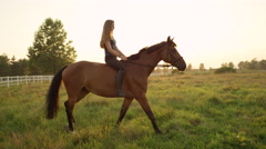 SLOW MOTION: Beautiful happy girl bareback riding mighty brown horse Stock Footage