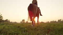 LOW ANGLE VIEW: Mighty brown horse with young rider walking into golden sunset Stock Footage