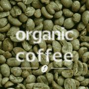 Organic green coffee beans Stock Illustration