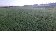 Fling over field near Tel Megiddo (Israel aerial footage) Stock Footage