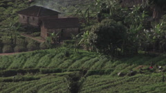 Farm buildings sit in the fields of rural Rwanda. Stock Footage