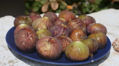 Plate of freshly picked figs. Stock Footage