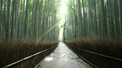 Person Walking Centered Path God Rays Arashiyama Bamboo Forest Kyoto HD 30fps Stock Footage