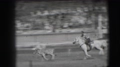 1941: rodeo calf nearly ropes the roper. CALIFORNIA Stock Footage