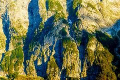 Beautiful detail of alpine mountain rocks covered with moos on sunny day Stock Photos