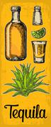 Glass and botlle of tequila. Cactus, salt, lime Stock Illustration