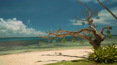Dead tree decorated with glass bulbs on white sand beach Stock Footage