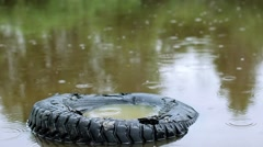 Raindrops on the water. Raindrops are falling. Rainy weather. Stock Footage