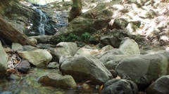 Upper Waterfall in Uvas Canyon Stock Footage