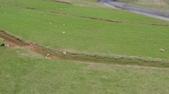 ICELANDIC WATERFALL DRONE SKOGAFOSS Stock Footage