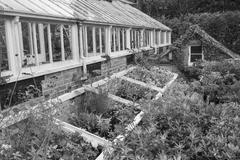 Beautiful old Victorian era greenhouse left ro ruin in old English garden Stock Photos