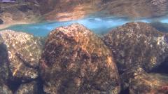 Underwater, waves splashing over the rocks, slow motion Stock Footage