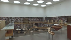 Vyborg Library in Russia design by architect Alvar Aalto Stock Footage