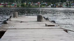 View from the pier on the lake in the summer Stock Footage