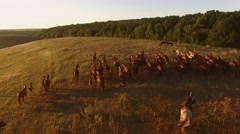 Horse herd is running. Aerial view of horserider Stock Footage